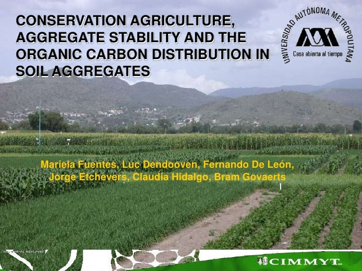 CONSERVATION AGRICULTURE, <br />AGGREGATE STABILITY AND THE <br />ORGANIC CARBON DISTRIBUTION IN <br />SOIL AGGREGATES<br ...