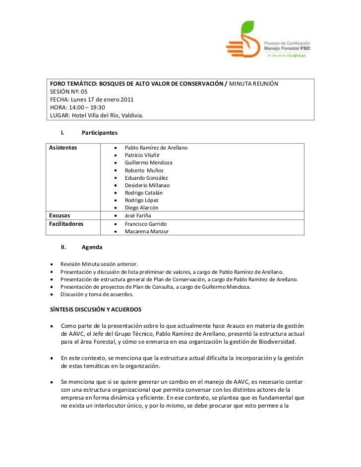 FORO TEMÁTICO: BOSQUES DE ALTO VALOR DE CONSERVACIÓN / MINUTA REUNIÓN <br />SESIÓN Nº: 05<br />FECHA: Lunes 17 de enero 20...