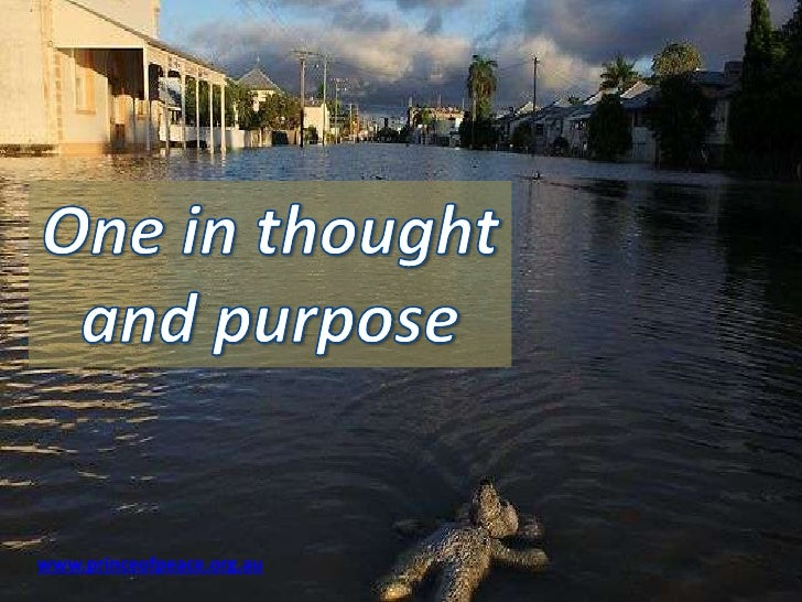 One in thought and purpose<br />www.princeofpeace.org.au<br />