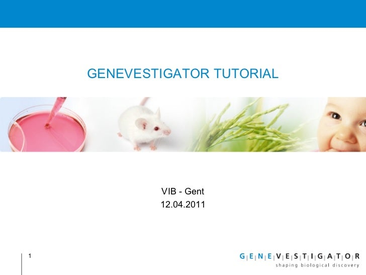 BITS - Genevestigator to easily access transcriptomics data