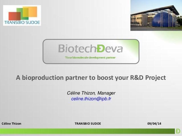 Ð Céline Thizon TRANSBIO SUDOE 09/04/14 A bioproduction partner to boost your R&D Project Céline Thizon, Manager celine.th...