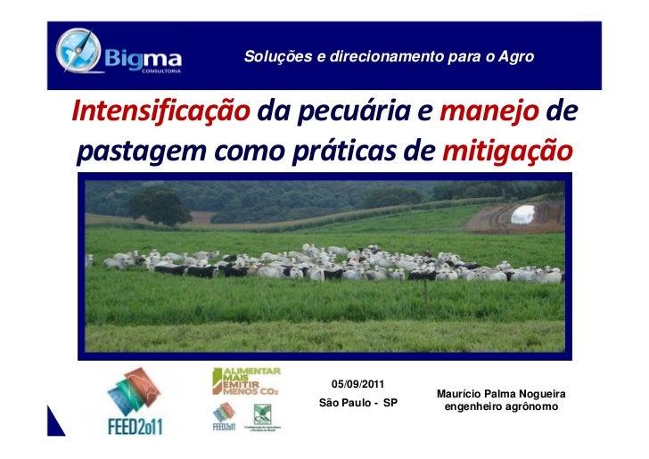 [Palestra] Pastagens e mitigacao CO2 - FEED2011 - Mauricio P. Nogueira (Bigma Consultoria)