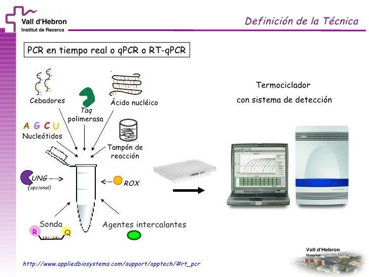 course-vhiructsueb-session-2-rtqpcr-3-728.jpg?cb=1318323447