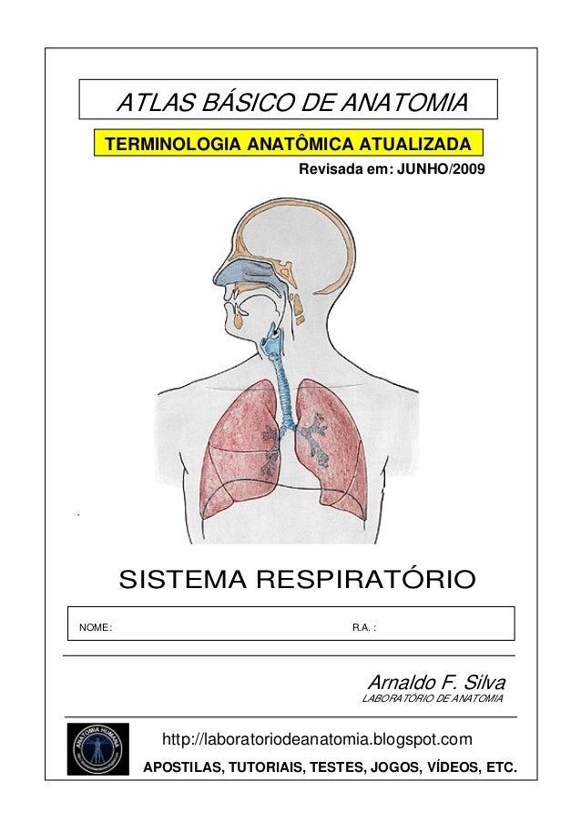 ATLAS BÁSICO DE ANATOMIA TERMINOLOGIA ANATÔMICA ATUALIZADA Revisada em: JUNHO/2009  ´  SISTEMA RESPIRATÓRIO NOME:  R.A. : ...