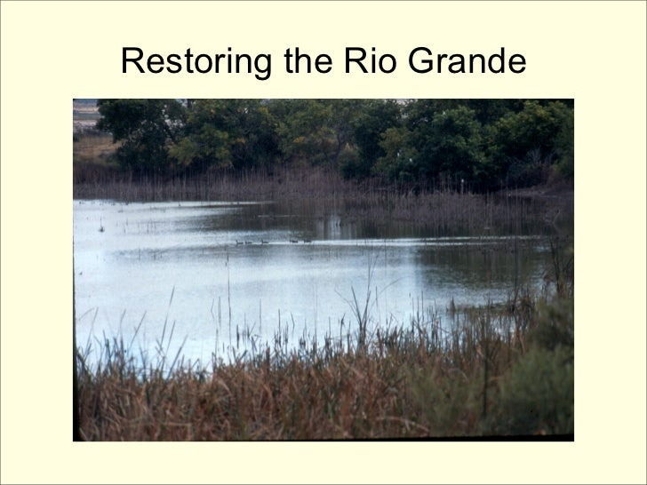 Restoring the Rio Grande