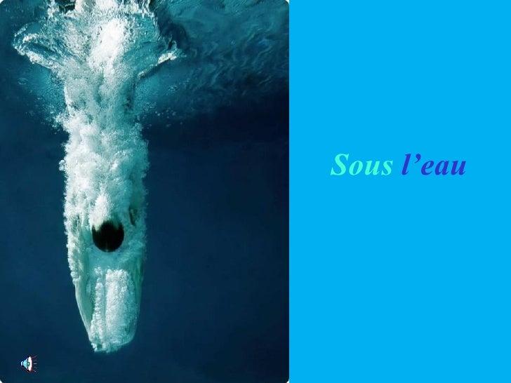 法國海底攝家之鏡頭