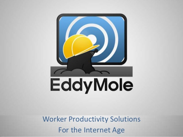 Worker Productivity Solutions    For the Internet Age