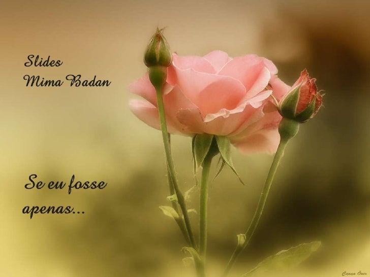 AUTORIA: Cecília MeirelesFORMATAÇÃO: Mima (Wilma) Badanmimabadan@yahoo.com.brMÚSICA: The days of wine and rosesExecução: F...