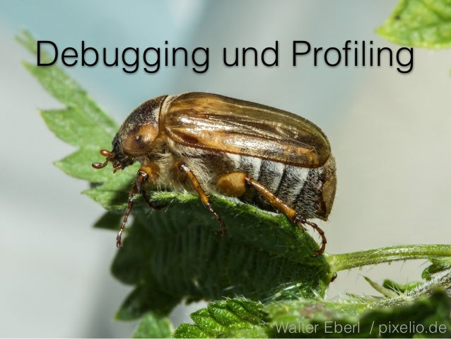 Debugging und Profiling Walter Eberl / pixelio.de