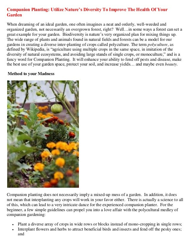 Companion Planting: Utilize Nature's Diversity to Improve the Health of Your Garden
