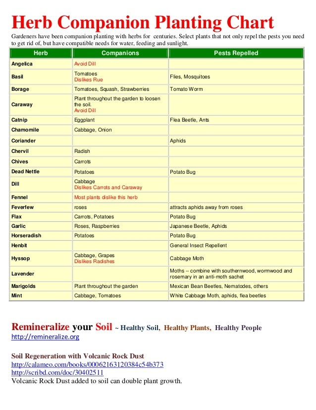 Herb companion planting chart herbal gardens for Gardening tools list pdf