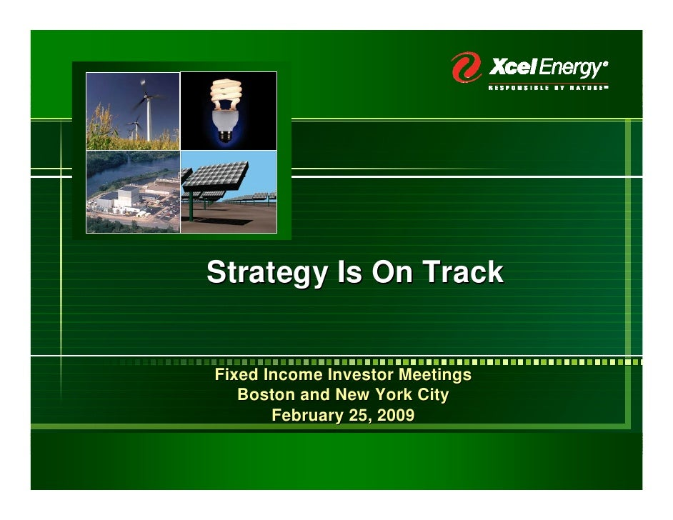 Strategy Is On Track   Fixed Income Investor Meetings    Boston and New York City        February 25, 2009