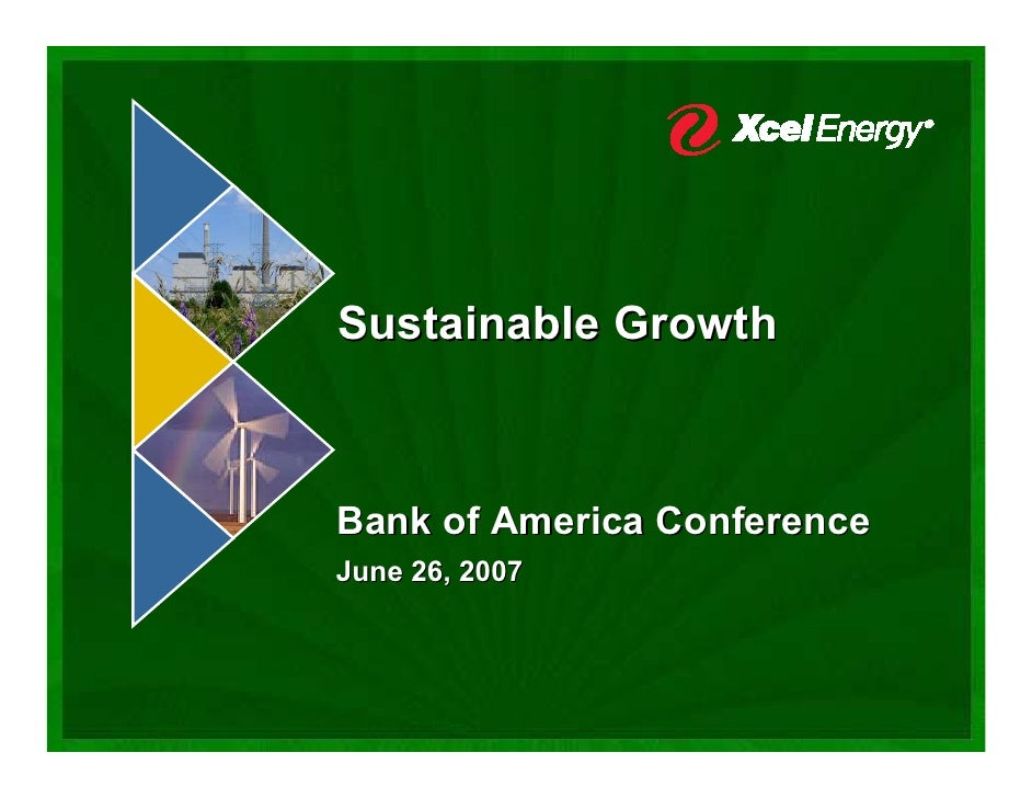Sustainable Growth    Bank of America Conference June 26, 2007