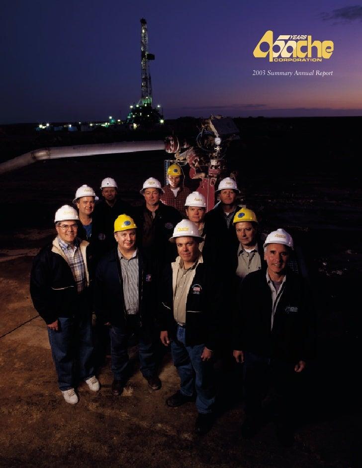 2003 Summary Annual Report