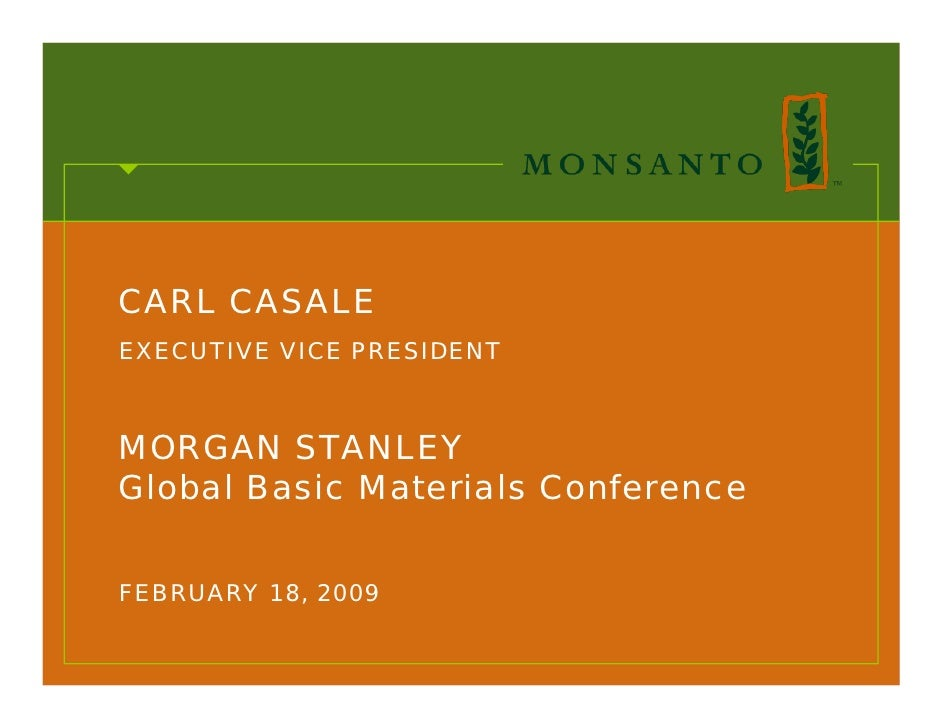 CARL CASALE EXECUTIVE VICE PRESIDENT    MORGAN STANLEY Global Basic Materials Conference   FEBRUARY 18, 2009