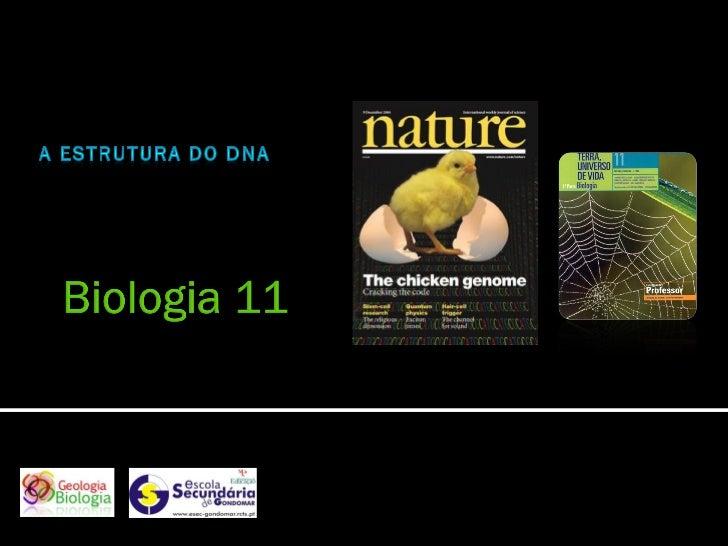 Nuno Correia 2010/11