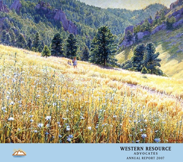 western resources _ar2007