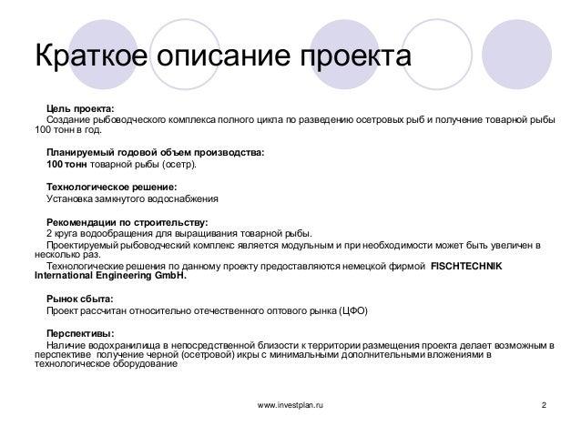 образец краткое описание проекта