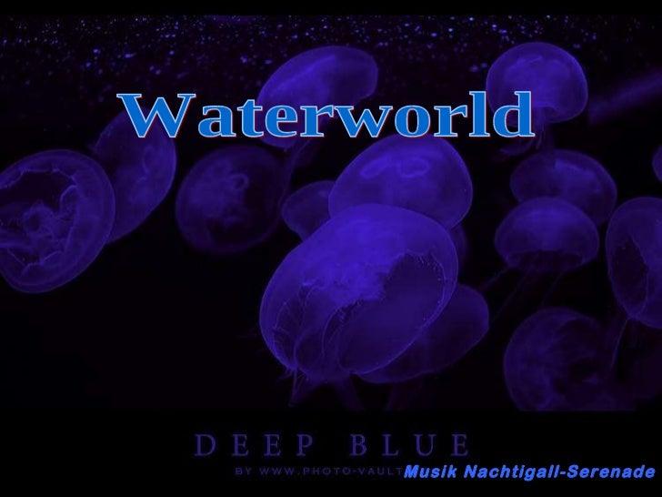 117 beautiful waterworld