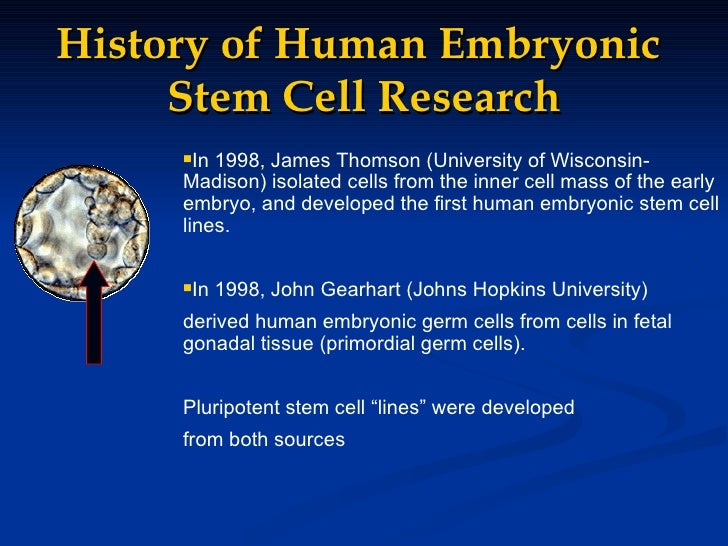 history stem cell research Immortal: an oral history of stem cell discovery  wicell's mission was to provide a safe haven for researchers to engage in stem cell research off of campus,.