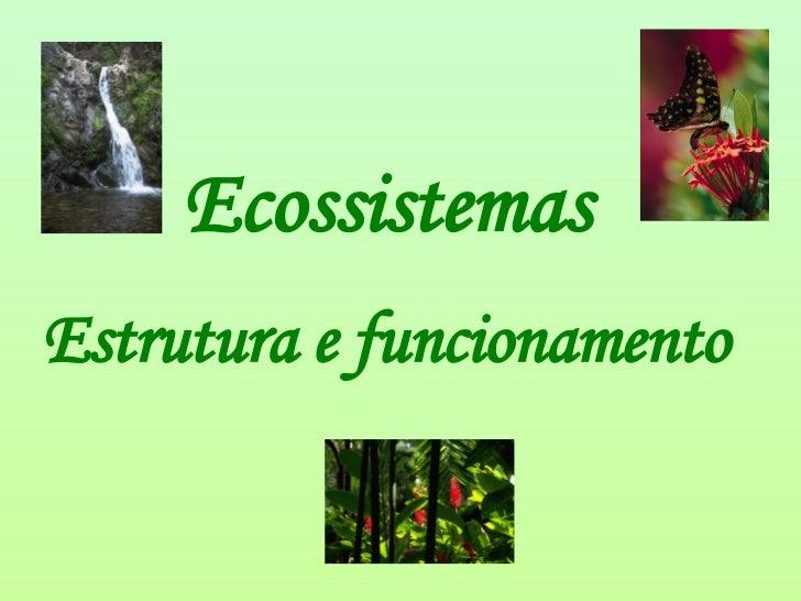 Ecossistemas  Estrutura e funcionamento