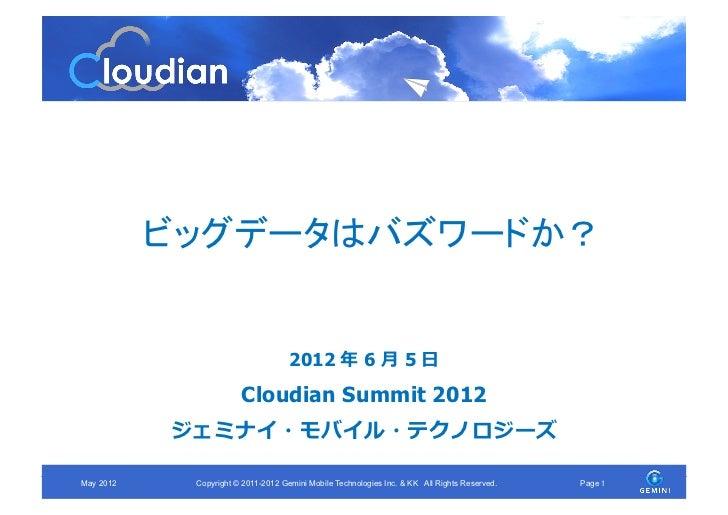 ビッグデータはバズワードか? (Cloudian Summit 2012)