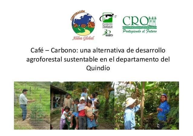 Café – Carbono: una alternativa de desarrollo agroforestal sustentable en el departamento del Quindío