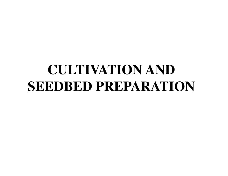 CULTIVATION ANDSEEDBED PREPARATION