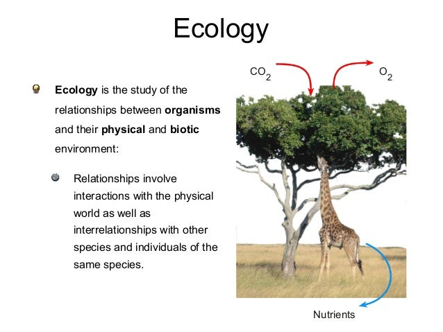 Ecology Ecology is the study of the relationships between organisms and their physical and biotic environment: Relationshi...