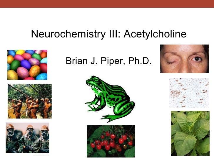 Neuropharmacology: Acetylcholine & Alzheimer's