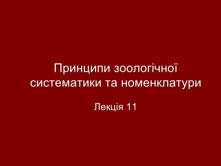 лекция 11 nomen