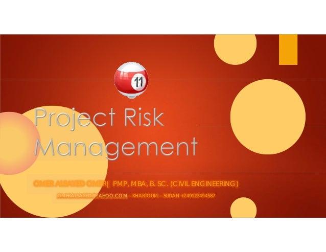 11 project risk management