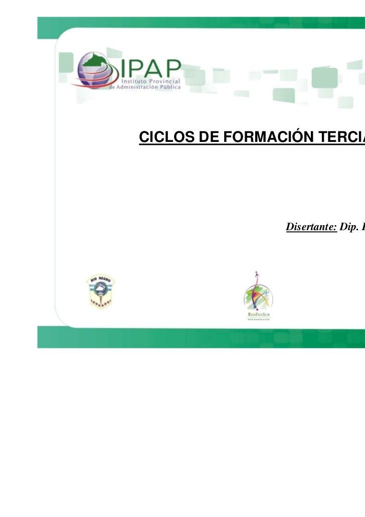 CICLOS DE FORMACIÓN TERCIARIA                Disertante: Dip. Romina Alcaras                                      10-08-2010