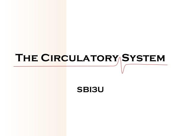 The Circulatory System SBI3U