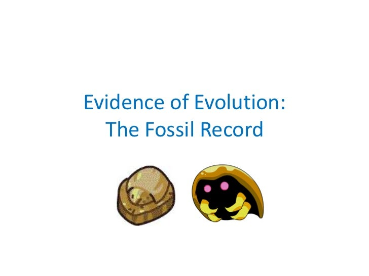 Evidence of Evolution:  The Fossil Record