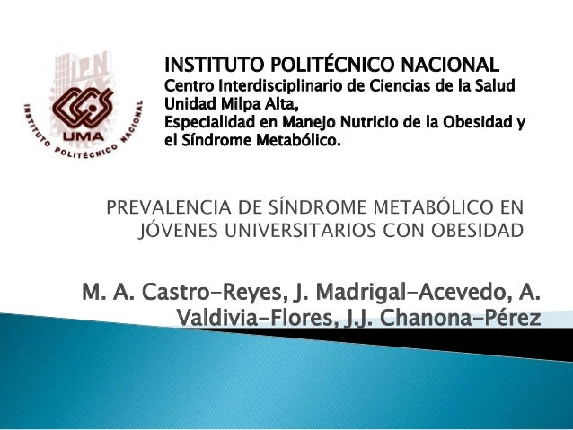 M. A. Castro-Reyes, J. Madrigal-Acevedo, A. Valdivia-Flores, J.J. Chanona-Pérez INSTITUTO POLITÉCNICO NACIONAL Centro Inte...
