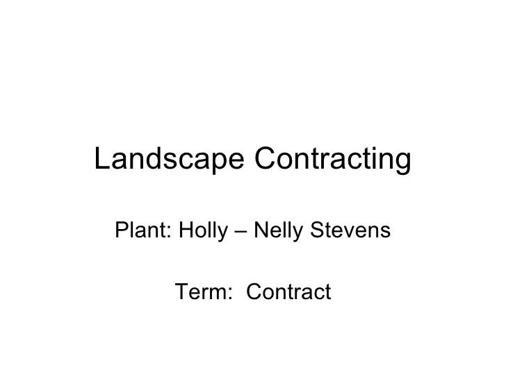 Landscape Contracting Plant: Holly – Nelly Stevens Term:  Contract