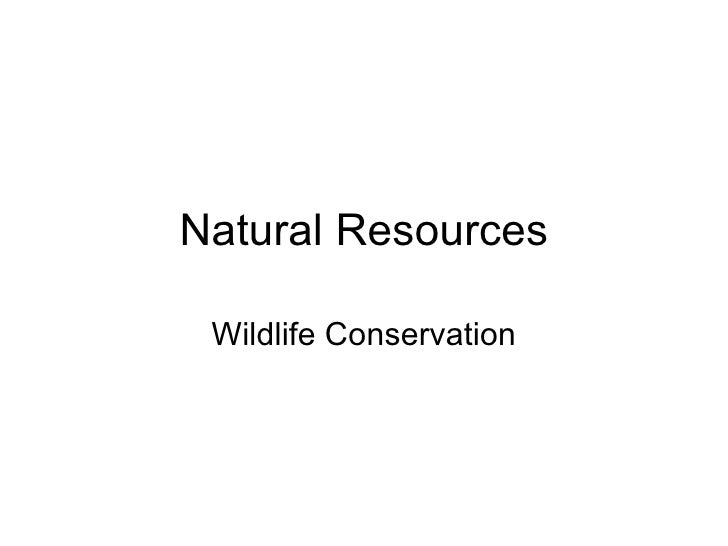Natural Resources Wildlife Conservation