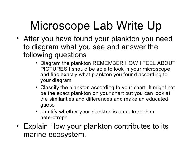 Microscope Lab Write Up <ul><li>After you have found your plankton you need to diagram what you see and answer the followi...