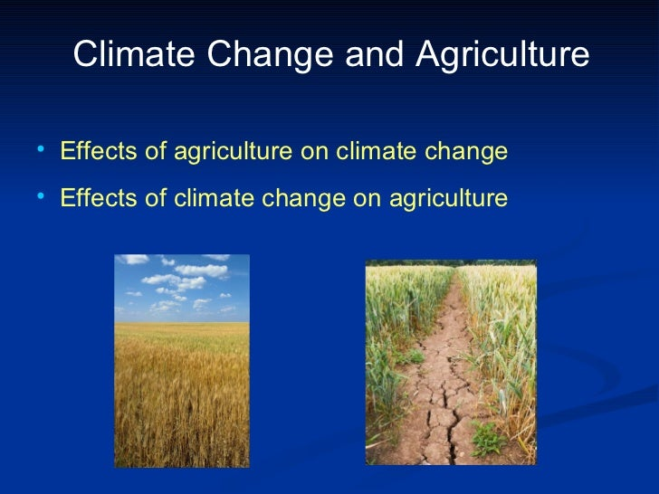 Climate Change and Agriculture <ul><li>Effects of agriculture on climate change </li></ul><ul><li>Effects of climate chang...