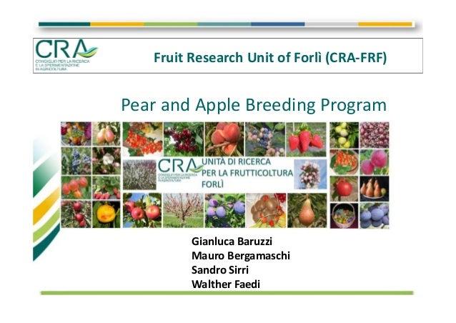 FruitResearchUnitofForlì(CRA‐FRF) PearandAppleBreedingProgram GianlucaBaruzzi MauroBergamaschi SandroSirri W...