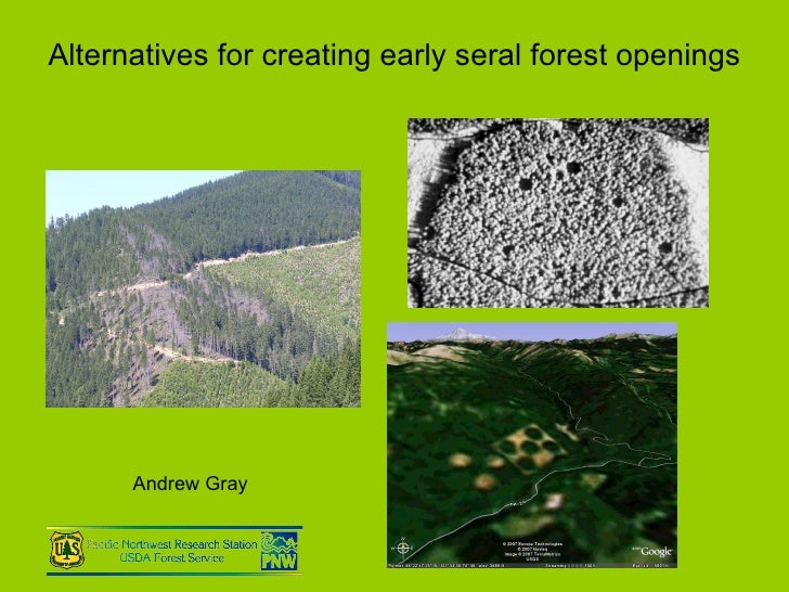 Alternatives for creating early seral forest openings Andrew Gray