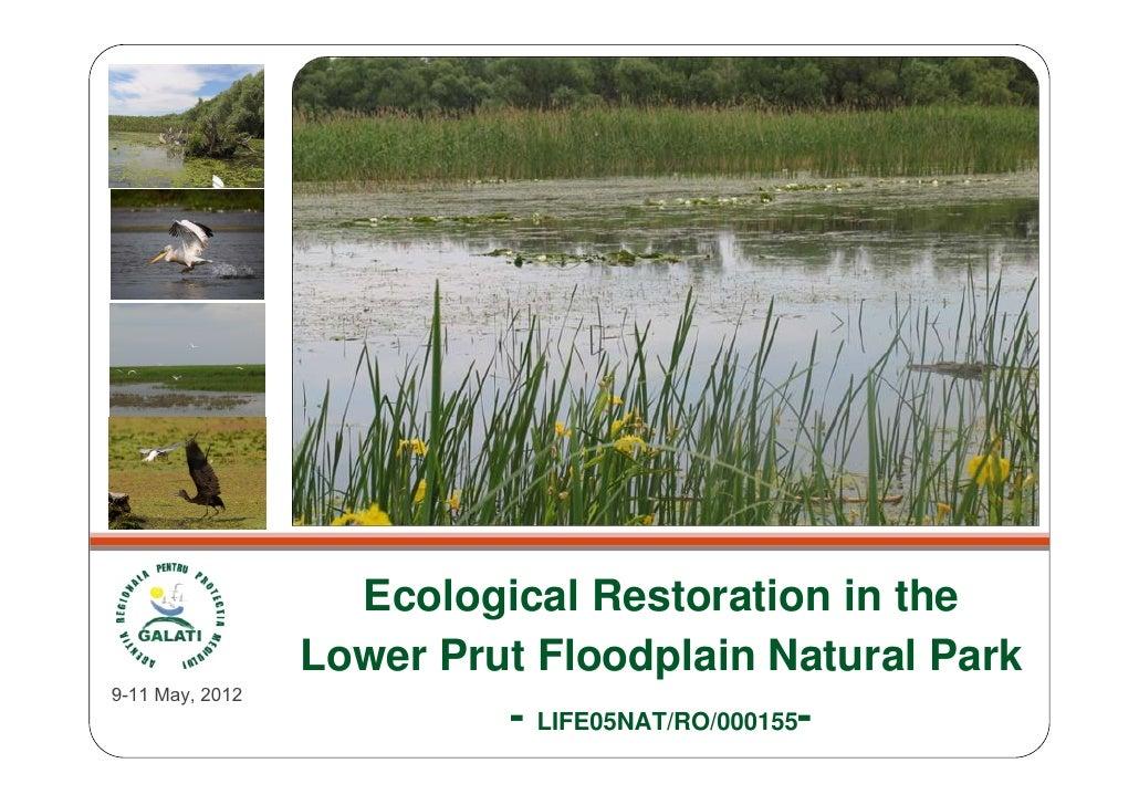 Ecological Restoration in the                 Lower Prut Floodplain Natural Park9-11 May, 2012                          - ...