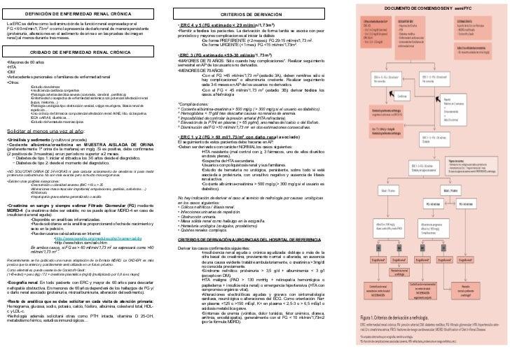 120530 tríptico derivación nefrología pdf