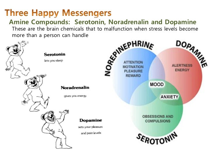 Tadalafil And Dopamine