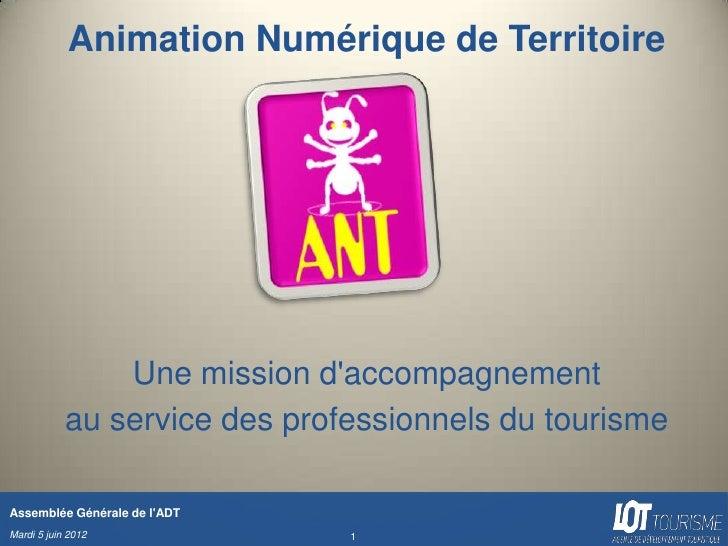 Animation Numérique de Territoire                Une mission daccompagnement            au service des professionnels du t...