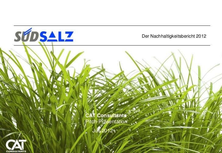 Der Nachhaltigkeitsbericht 2012CAT Consultants CAT Consultants31. August 2009 Pitch-Präsentation    Juli 2012