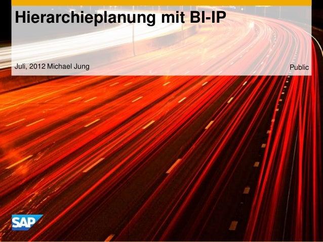 Hierarchieplanung mit BI-IPJuli, 2012 Michael Jung       Public