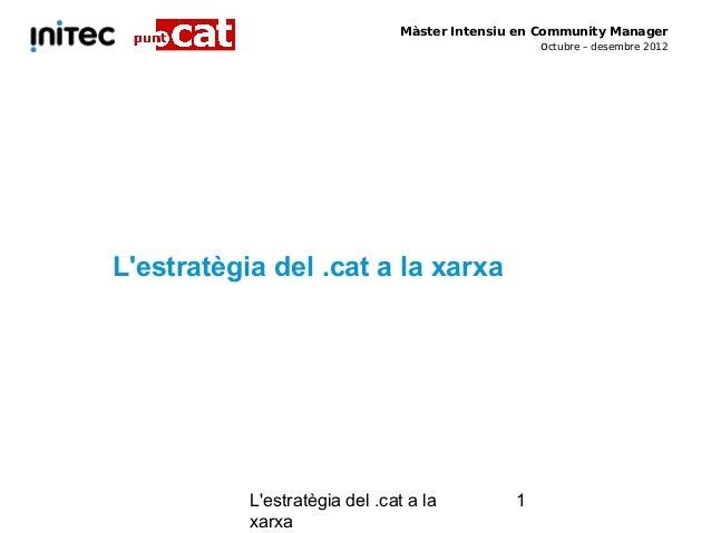 Màster Intensiu en Community Manager                                                   octubre – desembre 2012Lestratègia ...