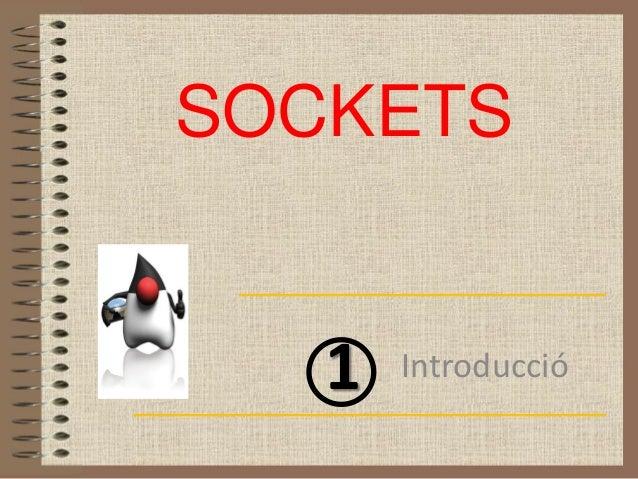 SOCKETS   1   Introducció